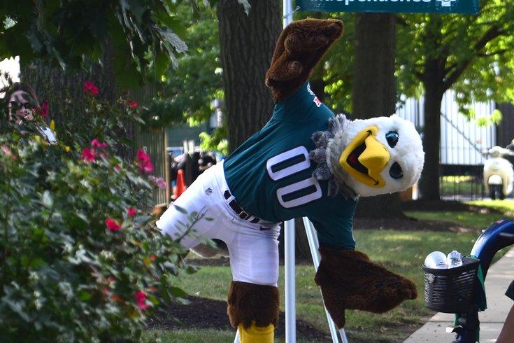 Swoop_Mascot_Eagles_Camp_Frese.jpg