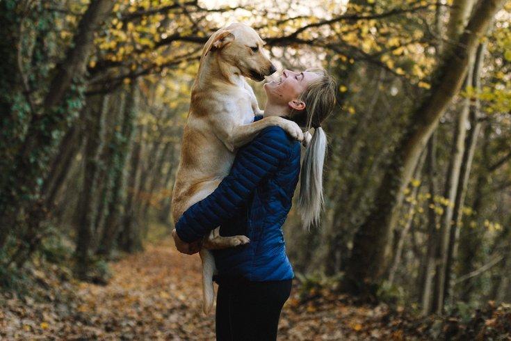 dog ownership genetic code