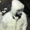 01052019_assault_suspect