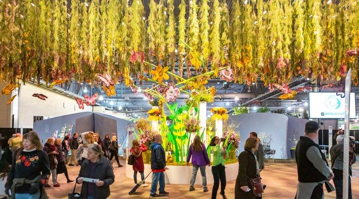 Carroll - 2019 Philadelphia Flower Show