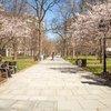 Carroll - Historic Washington Square
