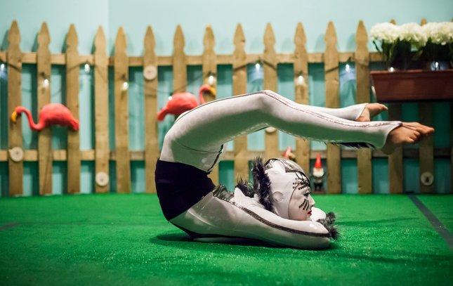 02-041916_CirqueOVO_Carroll.jpg