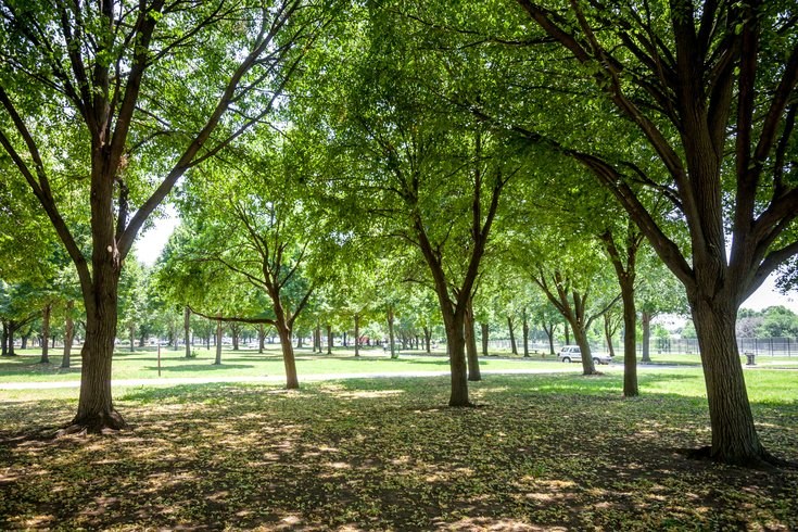Carroll - FDR Park