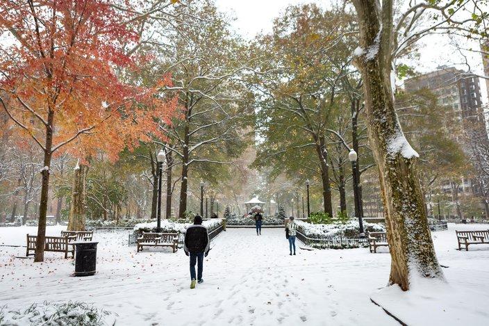 Carroll - Snow in Rittenhouse