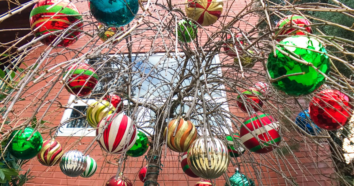 Holiday attractions to visit in New