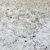 03202015_snow