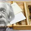 03232017_Einstein_brain_panel2