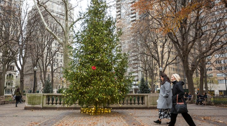 Stock_Carroll - Holiday Decorations, Rittenhouse Square Christmas Tree