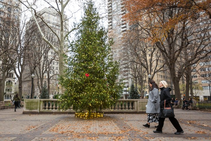Stock_Carroll - Holiday Decorations, Rittenhouse Square Christmas Tree - Here's How (and Where) To Recycle Your Christmas Tree In