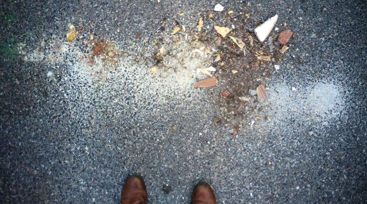 Garbage on Street – Carroll
