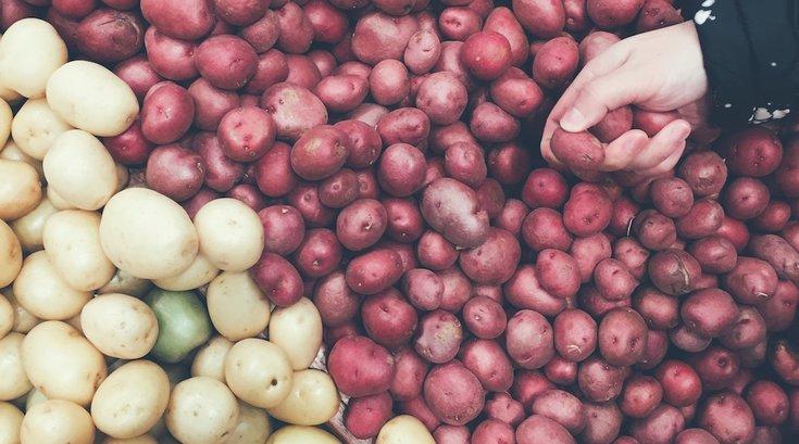 potato nutrition carbs