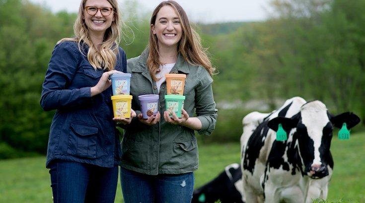 lactose-free dairy ice cream