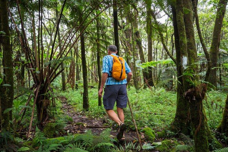 Nature Health Benefits