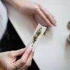 04202018_marijuana_unsplash