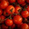 tomatoes lycopene skincare