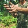 dirt bacteria stress