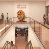 Rendering of Mutter Museum renovations