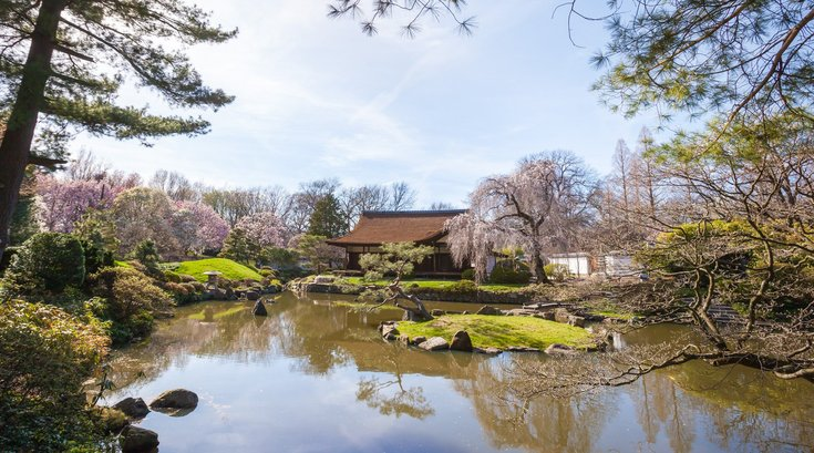 Stock_Carroll - Shofuso Japanese House and Garden