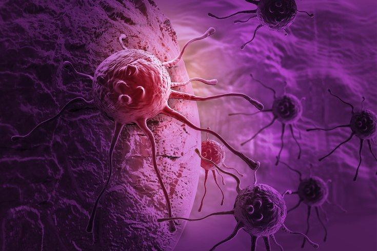 Cancer Research Penn Medicine