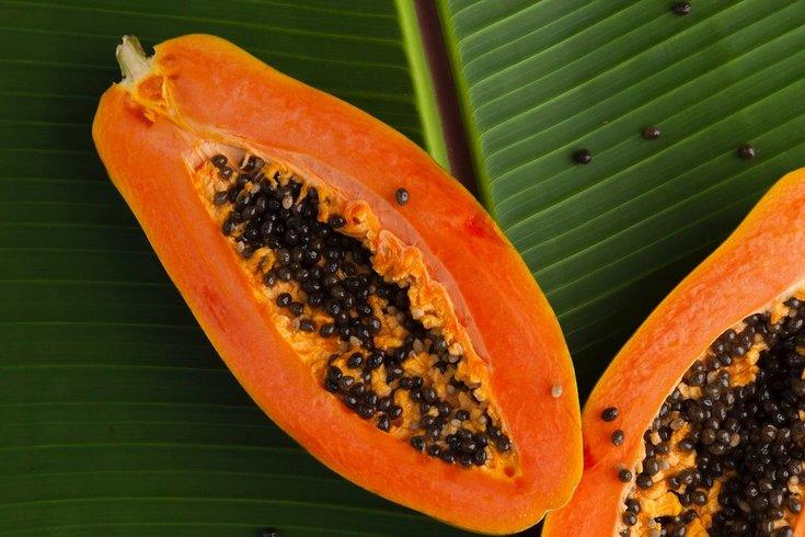 papaya salmonella outbreak
