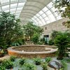 07042018_healing_garden_Mayo_CC