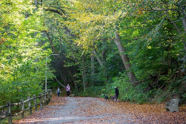 Mental Health Green Spaces