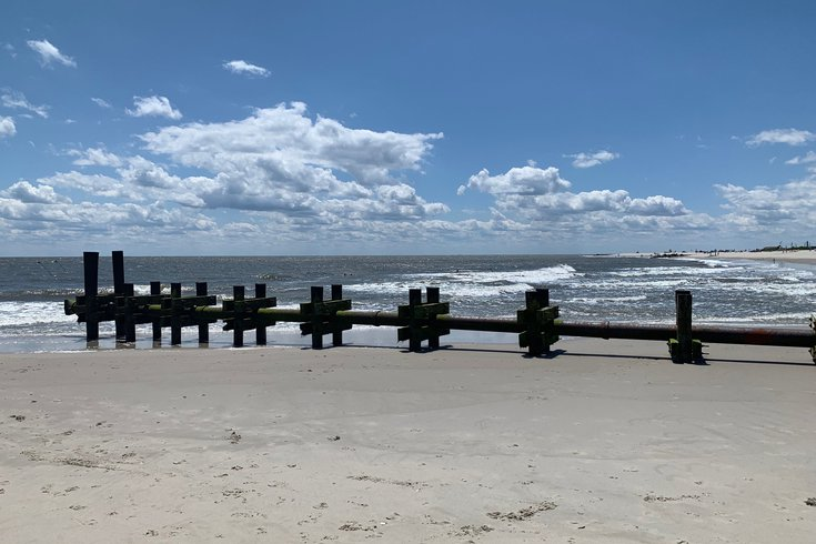 Cape May bees beach