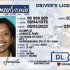 PennDOT driver's license