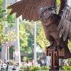 Stock_Carroll - Temple University Owls