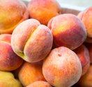 Carroll - Peaches