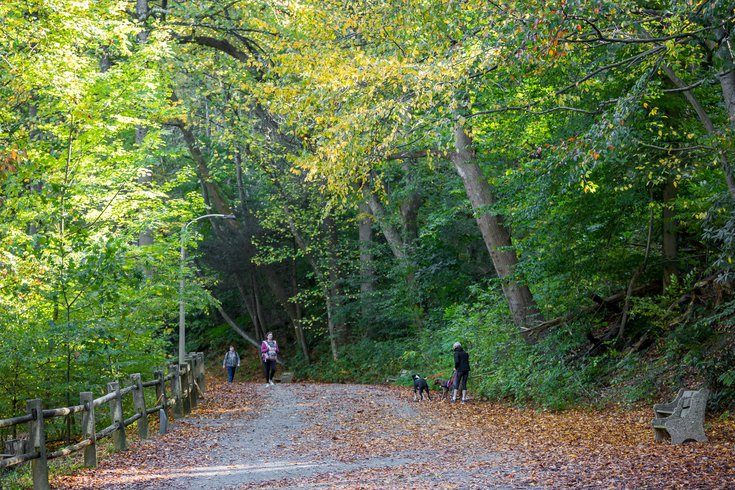 COVID-19 Parks Benefits