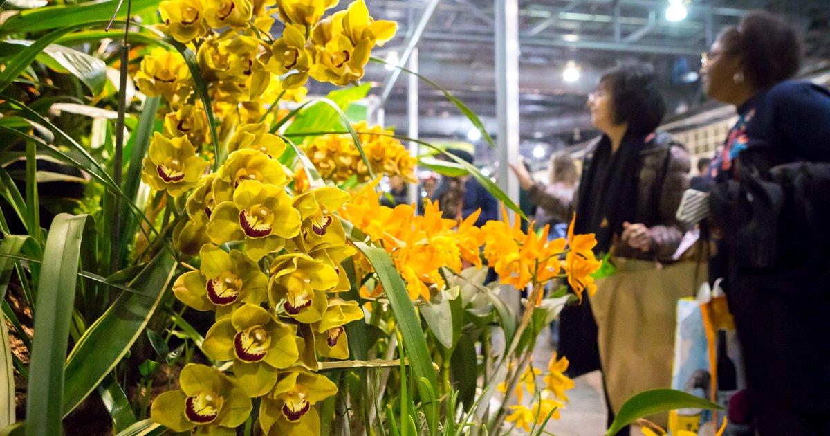 Philadelphia Flower Show 2020 Theme.Tickets Now On Sale For The 2020 Phs Philadelphia Flower