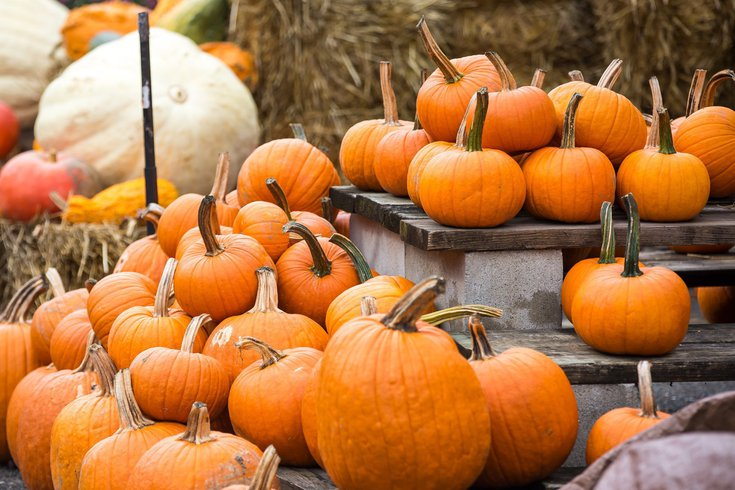 Fall Events Dilworth Park