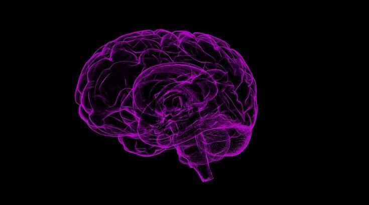 Rape Memory Brain
