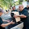 091617_VanAukenT_winemaking_0336.jpg