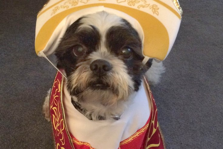 09222015_buddy_pope_costume