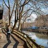 Stock_Carroll - Walking along the Manayunk Canal