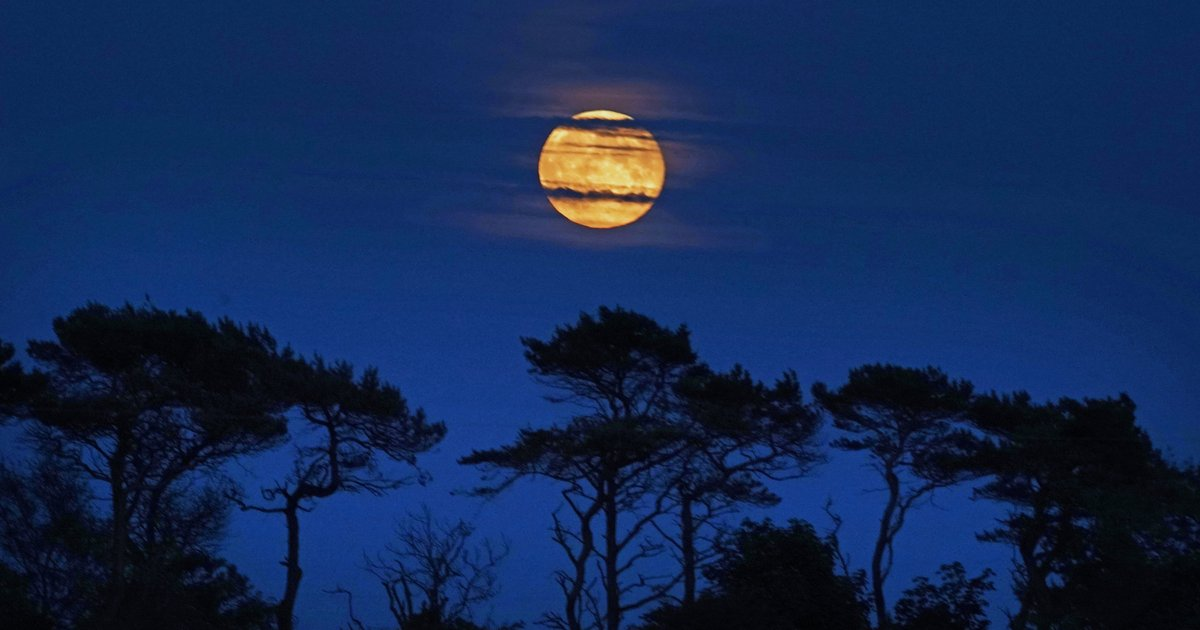 A glowing orange 'Hunter's Moon' will light up the sky on Sunday - EpicNews