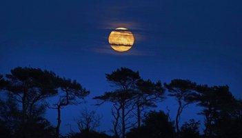 Hunter's Moon October Philadelphia