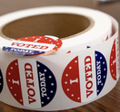 2020 Election guide voting