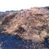 10052016_Jersey_Recycling_debris_full_NJDEP