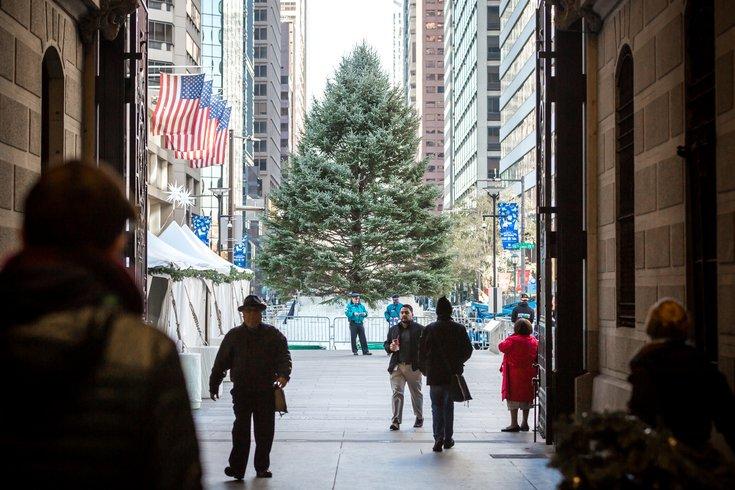 Carroll - Philadelphia Holiday Tree