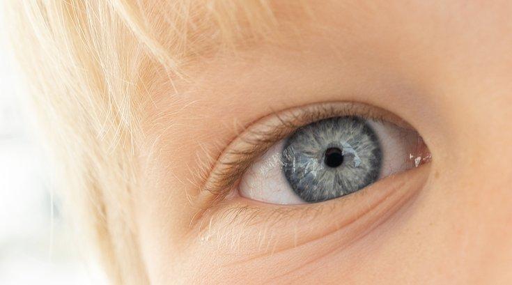 eye injuries bb guns paintball pellet