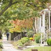 Stock_Carroll - Collingswood Suburban Street