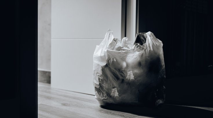 plastic shopping bag laws