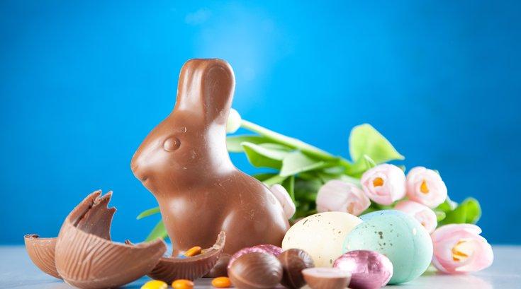Easter brunch at Elmwood Park Zoo