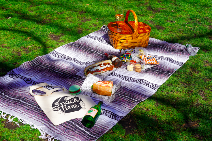 dream picnic
