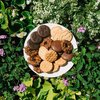 Girl Scout cookies random act of kindness
