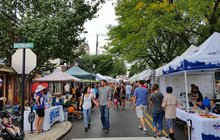 Limited - Jenkintown Fest