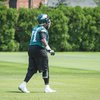 Carroll - Eagles Stock Jason Peters